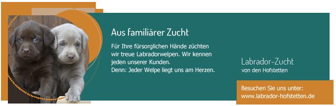 welpen-banner
